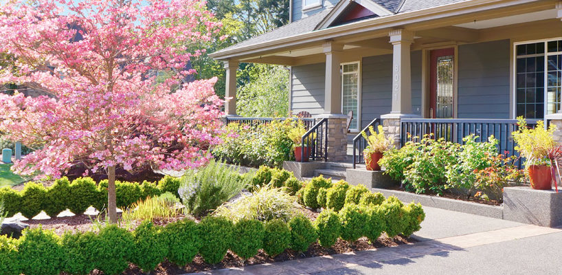 Inexpensive Ways to Boost the Curb Appeal of Your Home